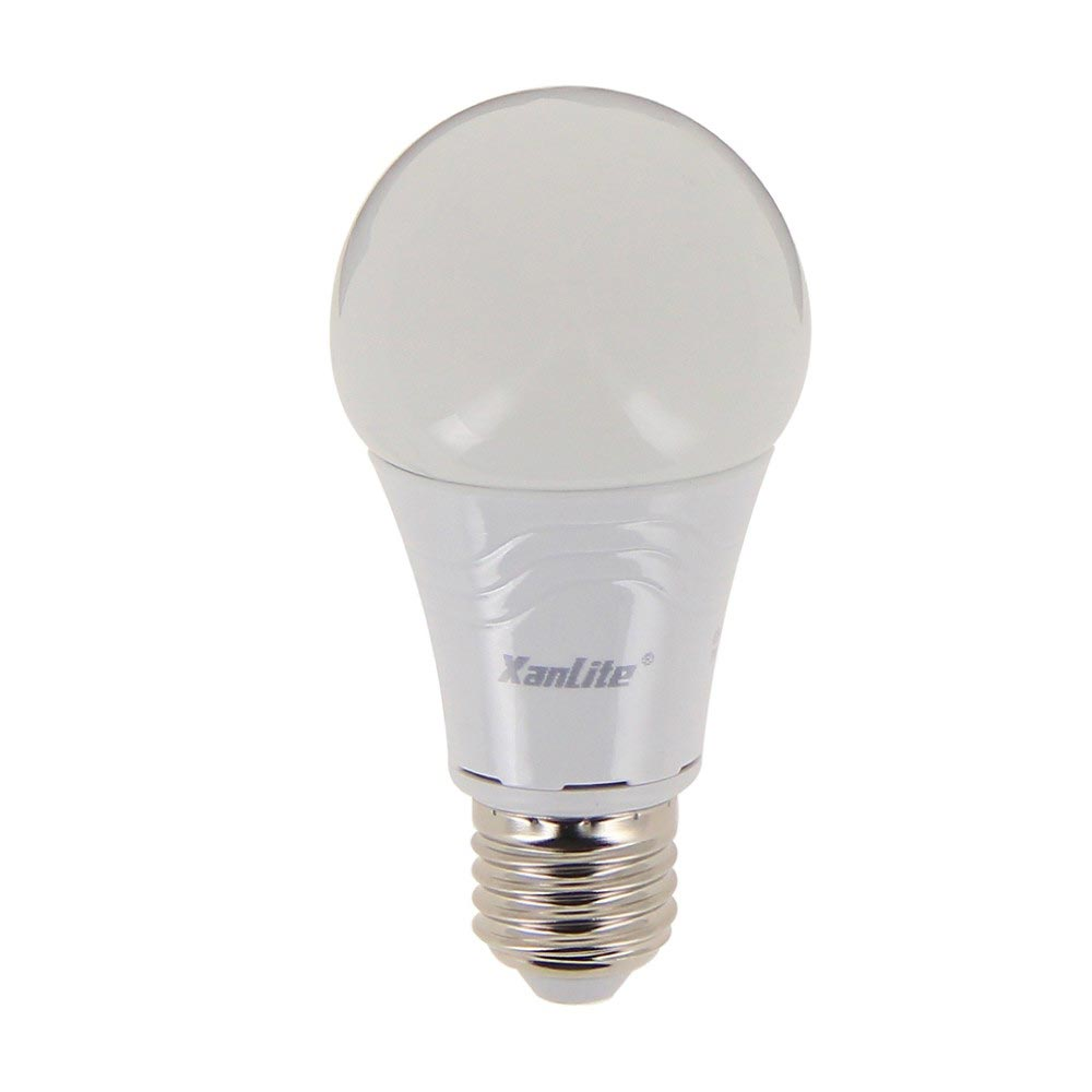 Ampoule LED globe A60 - culot E27 - dimmable