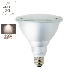 PAR38 LED light bulb - E27 base - classic