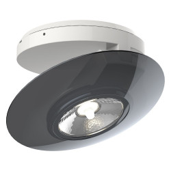 Surface mounted adjustable spotlight with grey ring