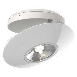 Surface mounted adjustable spotlight with white ring