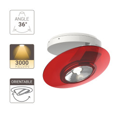 Surface mounted adjustable spotlight with red ring