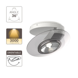 Surface mounted adjustable spotlight with transparent ring